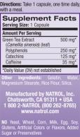 Green Tea 500 mg. / 60 Caps.