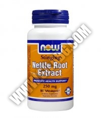 NOW Nettle Root Extract 250mg. / 90 VCaps.