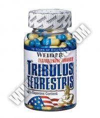 WEIDER Tribulus Terrestris 240 Caps.