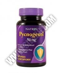 NATROL Pycnogenol ® 50mg. / 30 Caps.