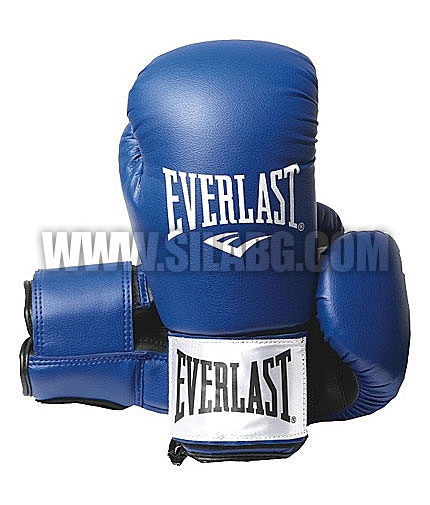 EVERLAST Leather Boxing Gloves