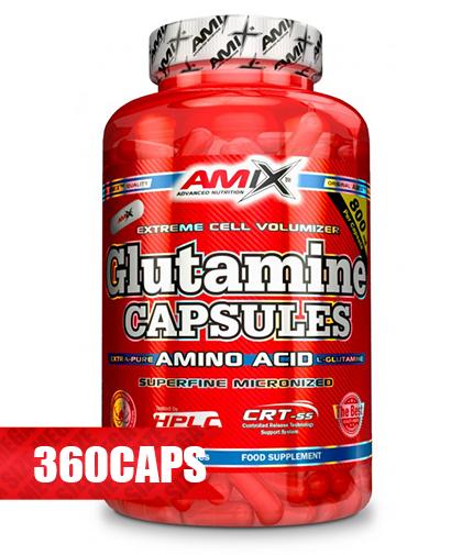 AMIX L-Glutamine 800mg. / 360 Caps.