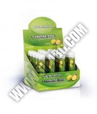 PURE NUTRITION L-Carnitine 2000 with Guarana and Green Tea / 20 Amp.