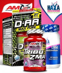 PROMO STACK Post Cycle Therapy Plus