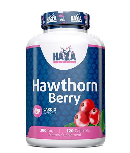 HAYA LABS Hawthorn Berry 300mg. / 120 caps.