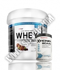 PROMO STACK Everbuild Whey Build 10 Lbs. / SCIVATION Xtend Intra-Workout Catalyst! /New Formula/ 90 Servs.