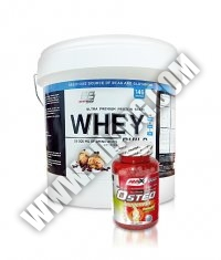 PROMO STACK Everbuild Whey Build 10 Lbs. / AMIX Osteo Anagenesis 120 Caps.