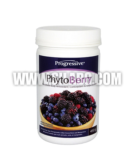 PROGRESSIVE Phyto Berry