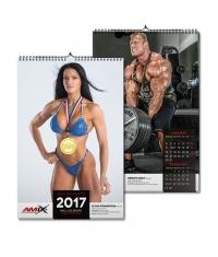 AMIX Calendar 2017