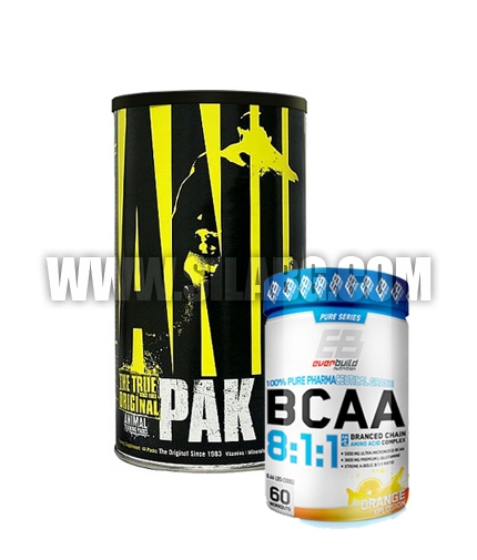 PROMO STACK Professional Recovery  4