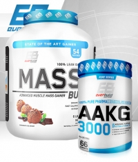 PROMO STACK Fitness Arsenal 2