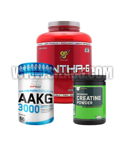 PROMO STACK Beast Yourself 7