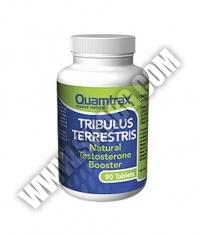 QUAMTRAX NUTRITION Tribulus Terrestris / 90 tabs