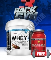 PROMO STACK Back3Gym