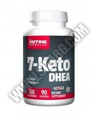 Jarrow Formulas 7-Keto DHEA 100mg. / 90 Caps.