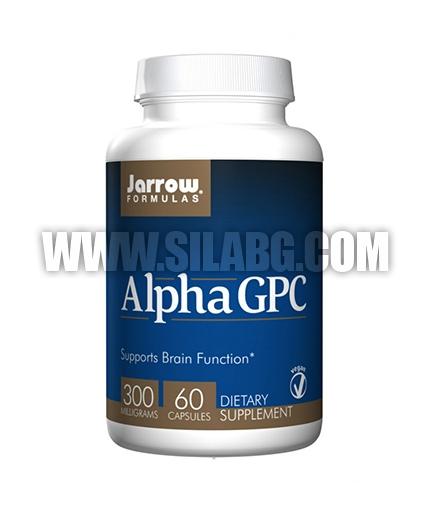 Jarrow Formulas Alpha GPC 300mg. / 60 Caps.