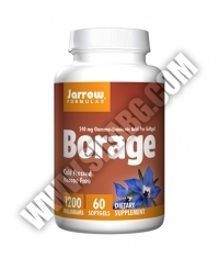 Jarrow Formulas Borage (GLA) 1200mg. / 60 Soft.
