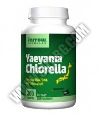 Jarrow Formulas Yaeyama Chlorella / 300 Tabs.