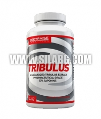 BODYRAISE NUTRITION Tribulus / 60caps