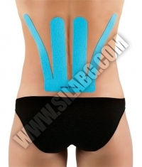 SPIDERTECH PRE-CUT LOWER BACK