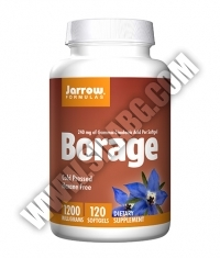 Jarrow Formulas Borage GLA-240 1200mg. / 120 Soft.