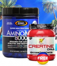 PROMO STACK Gaspari Limited Offer 4