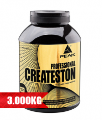 PEAK Createston Professional UP 2015