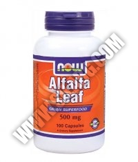 NOW Alfalfa Leaf 500mg. / 100 Caps