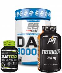 PROMO STACK Physique Stack 27