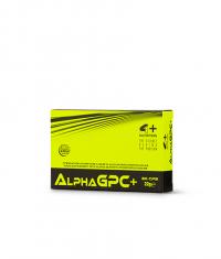4+ NUTRITION Alpha GPC+