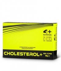 4+ NUTRITION Cholesterol+