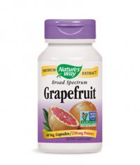 NATURES WAY Grapefruit Seed / 250mg. / 60 Vcaps