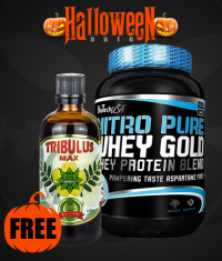 PROMO STACK HALLOWEEN STACK 5