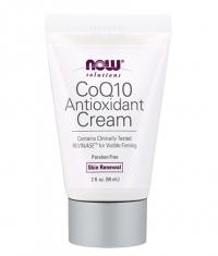 NOW CoQ10 Antioxidant Cream 59ml.