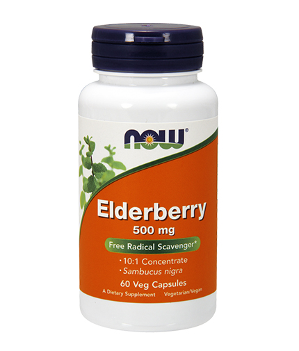 NOW Elderberry 500 mg / 60Vcaps.