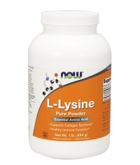 NOW L-Lysine Powder 454g
