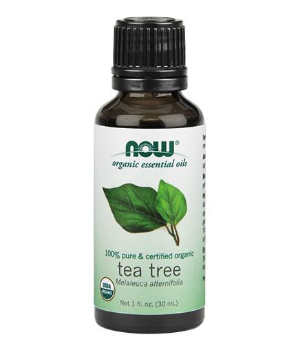 NOW Organic Tea Tree Oil / 30ml.