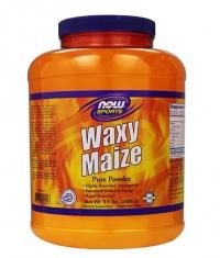 NOW Waxy Maize