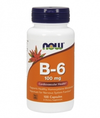 NOW Vitamin B-6 100mg / 100 caps.