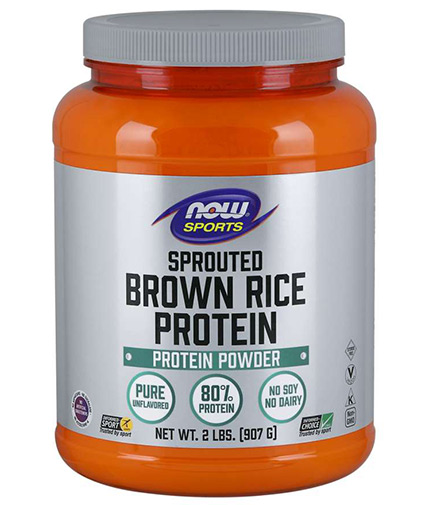 NOW Sprouted Brown Rice Protein