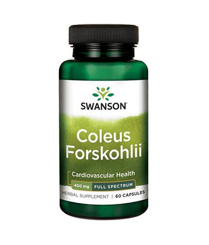SWANSON Coleus Forskohlii 400mg. / 60 Caps