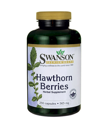 SWANSON Hawthorn Berry 565mg. / 250 Caps