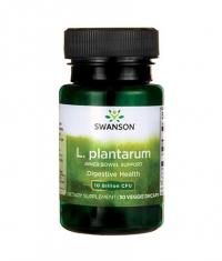 SWANSON L. plantarum Inner Bowel Support 10 Billion CFU / 30 Vcaps