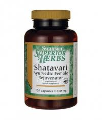 SWANSON Shatavari Ayurvedic Female Rejuvenator 500mg. / 120 Caps