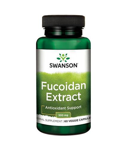 SWANSON Fucoidan Extract 500mg. / 60 Vcaps