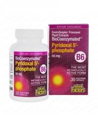 NATURAL FACTORS Vitamin B6 (Pyridoxal 5-Phosphate) 50mg. / 30 Vcaps