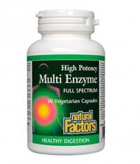 NATURAL FACTORS High Potency Multi Enzyme / 60 Vcaps