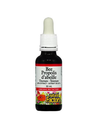 NATURAL FACTORS Bee Propolis / 30ml