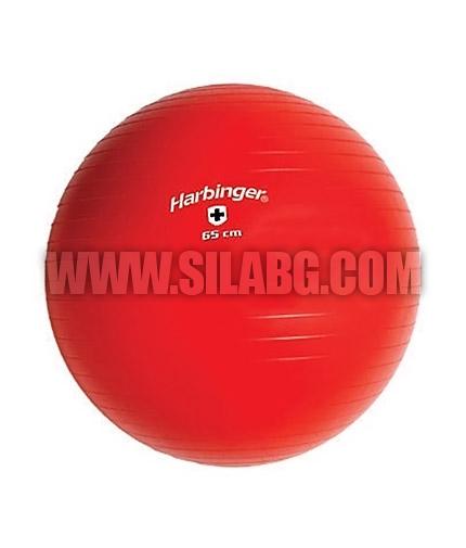 HARBINGER Swiss Training Ball / 65 cm