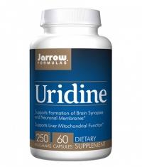 Jarrow Formulas Uridine 250mg / 60 Caps